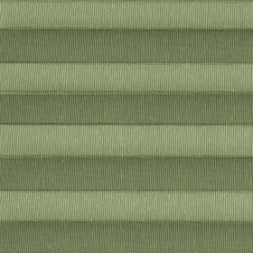 1280 Forest Green
