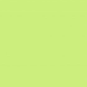 4569 Pale Green