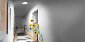 velux sunflowers in hallway