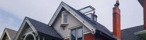 Velux Cabrio balcony skylight 31251 header