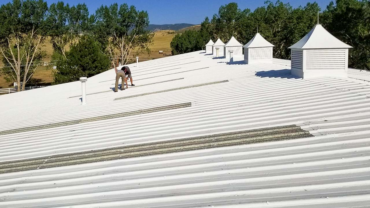 Translucent Roof Panel Replacement Skylight Specialists Inc