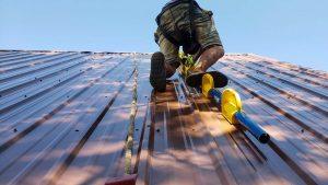 new skylight metal roof 31466-5